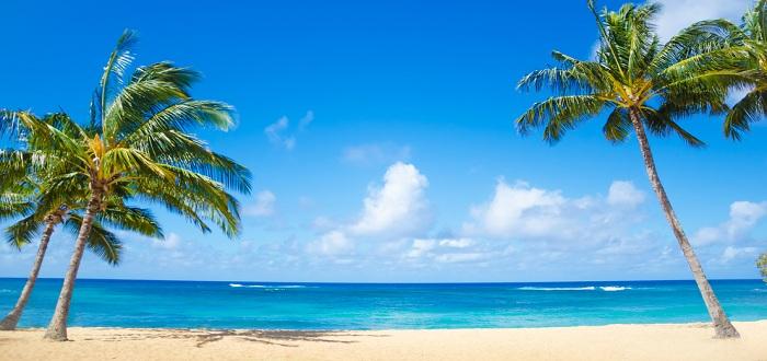 ハワイに行けるマイルってどのくらい?