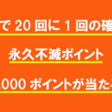 抽選で20回に1回の確率で永久不滅ポイント1,000ポイントが当たる