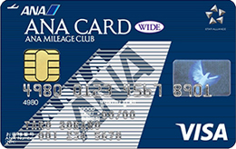 ANA VISA ワイドカードのデメリット