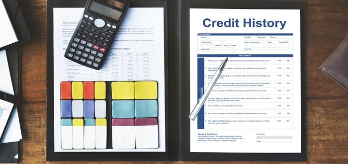 理想的なクレジットヒストリー サルでも分かるおすすめクレジットカードオリジナル画像