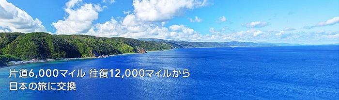 JALマイルを特典航空券と交換する サルでも分かるおすすめクレジットカードオリジナル画像