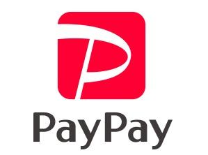 QRコード決済のPayPay サルでも分かるおすすめクレジットカードオリジナル画像