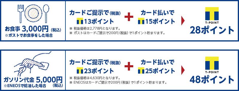 TSUTAYA加盟店ならポイントは2倍になる サルでも分かるおすすめクレジットカードオリジナル画像